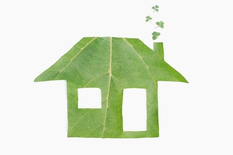 Eco-friendly home improvement projects